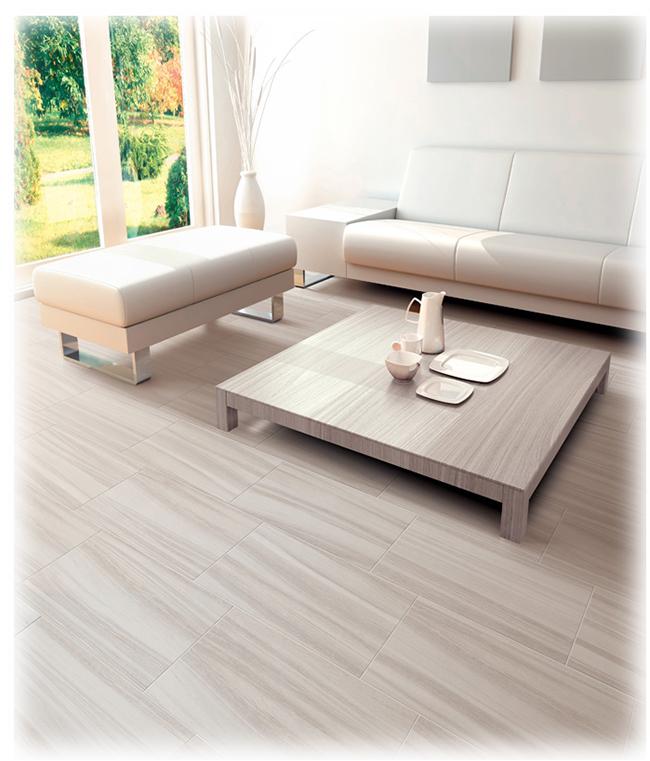 Porcelain Tile Living Room: True Life Porcelain Tile
