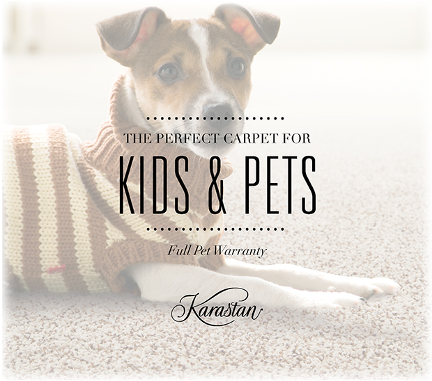 Karastan SmartStrand® Forever Clean is perfect for homes with Kids & Pets! On Sale Now!