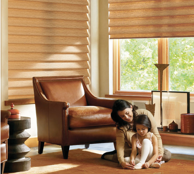 Hunter Douglas Vignette Taos style in the color of Copper Fields